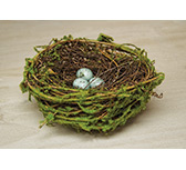 Natural Bird Nest w/Eggs - 6""