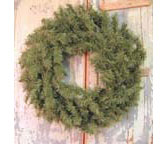 +Canadian Pine Wreath - 24""