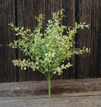 Green Peppergrass Spray, 14""