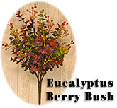 Eucalyptus Berry Bush - 13""