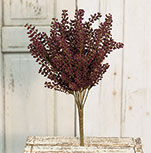 Bursting Astilbe Bush, 14\