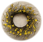 Star Forsythia Wreath, 20""