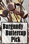 Buttercup Pick-Burgundy