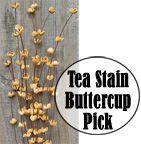 Buttercup Pick - Teastain