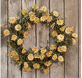 Teastain Daisy Wreath - 18""