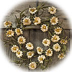 Teastain Daisy Wreath - 12""