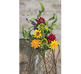 Mixed Prairie Daisy Spray, 18""