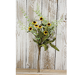 Bird's Eye Daisy Bush, Yellow, 18""