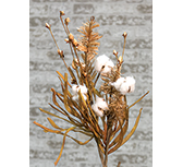 Cotton & Fall Grass Branch, 28\