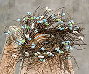 Pip Berry Bird Nest, Seabreeze - 4""