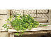 Badium Fern Bush Lt Green 15""