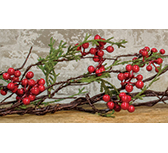 Cedar & Berry Garland, 5 ft.