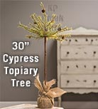 Cypress Topiary Tree, 30