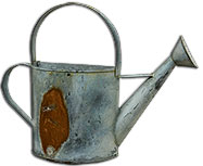 Rusty/Galvanized Wall Watering Can - 5\