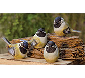Chickadees - Box of 4