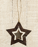 Oh My Stars Ornament