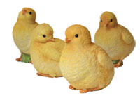 Baby Chicks, 4 Set