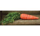 *String Wrapped Carrot w/Leaves
