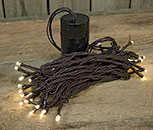 LED Battery Timer Lights, Brown Cord, 35 Lights