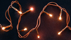 Teeny Lights, Brown Cord, 20ct