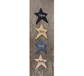 Vintage Star Word Magnets, 4/Set