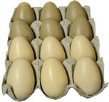 *Natural Eggs In Crate - 12/Set