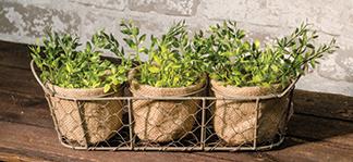 Mesh Basket w/3 Burlap Planters